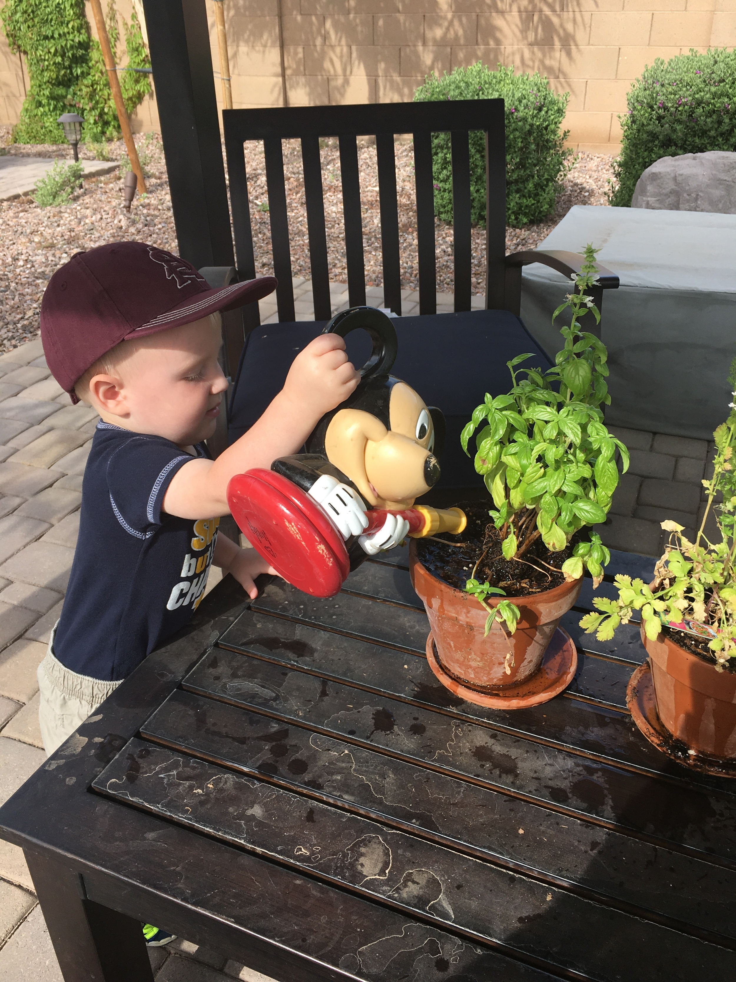 Is there anything sweeter than a toddler tending to his plants?