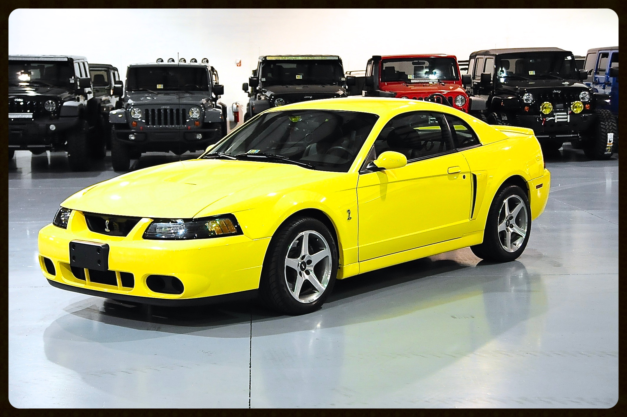 2003 Cobra SVT Terminator....Only 4K Original Miles...All Documents Since Day 1...Click to Enjoy Photos and Video