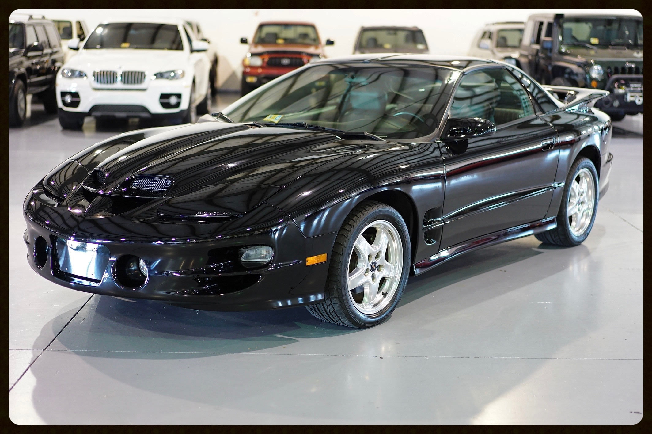 2002 Pontiac Trans Am WS6 Ram Air....Very Rare Car with ONLY 48K Miles...Black on Black with 6 Speed Tranny. This WS6 is absolutely Flawless