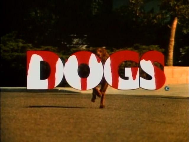 dogs1976dvdr.jpg