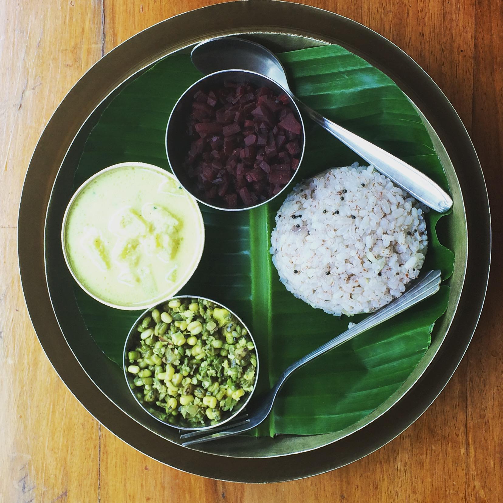 Indian Odyssey to Lifelong Health