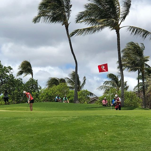 You can tell by the 🌴 that the 💨 is wreaking havoc on the tees!  Nelly Korda on #4 green #lottechampionship