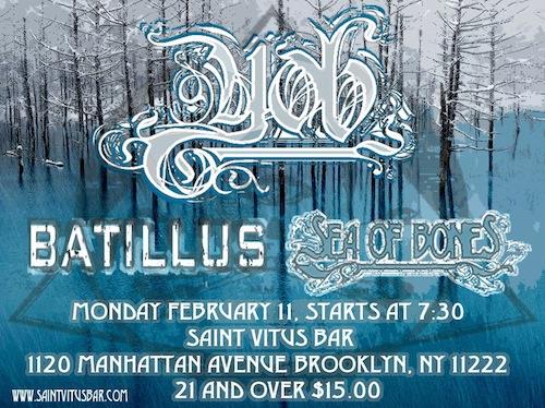 batillus_stvitus_11feb2013
