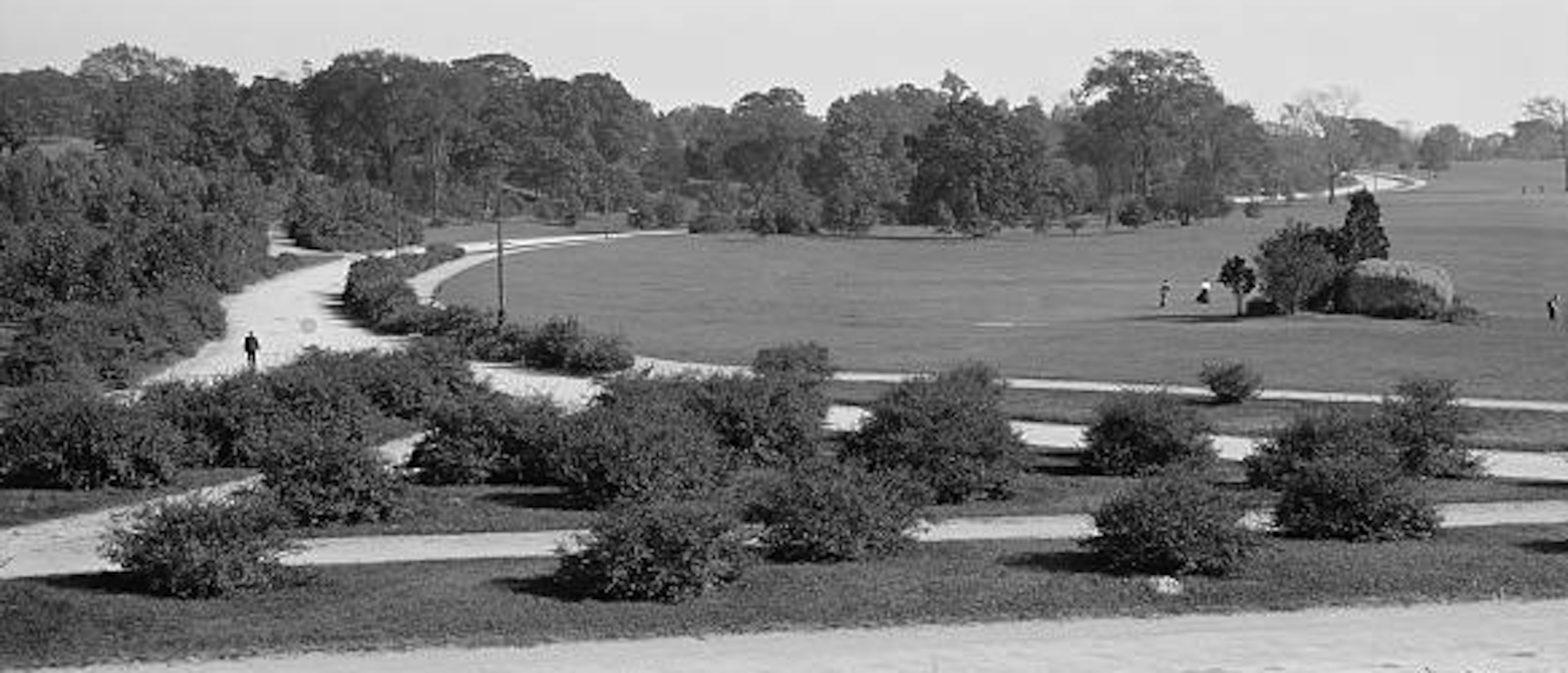 Golf was played in many of Frederick Law Olmsted's parks like Franklin Park in Boston