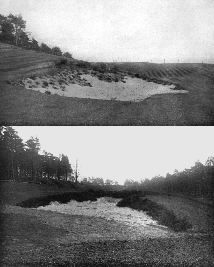 The first professional British golf architect, Harry Colt, introduced the concept of natural looking bunkers in North America.