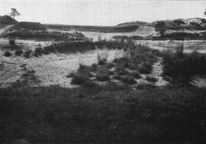 Pine Valley - here is the second hole - looked like no other golf course in America when it opened for play in 1921.