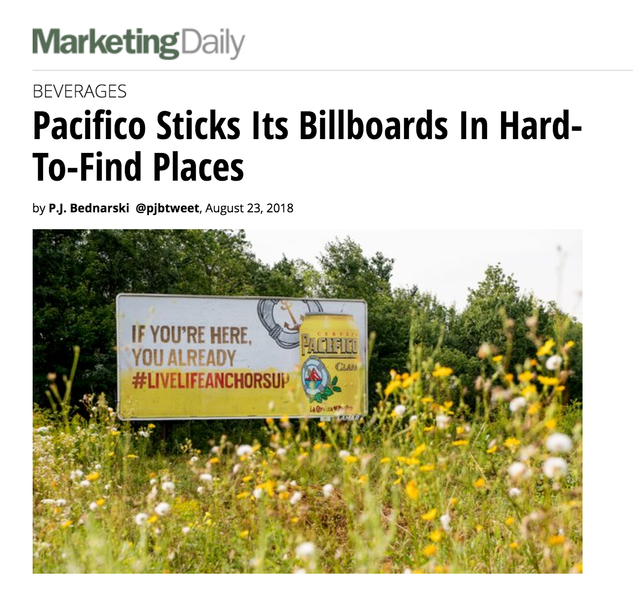 pacifico-marketingdaily.png