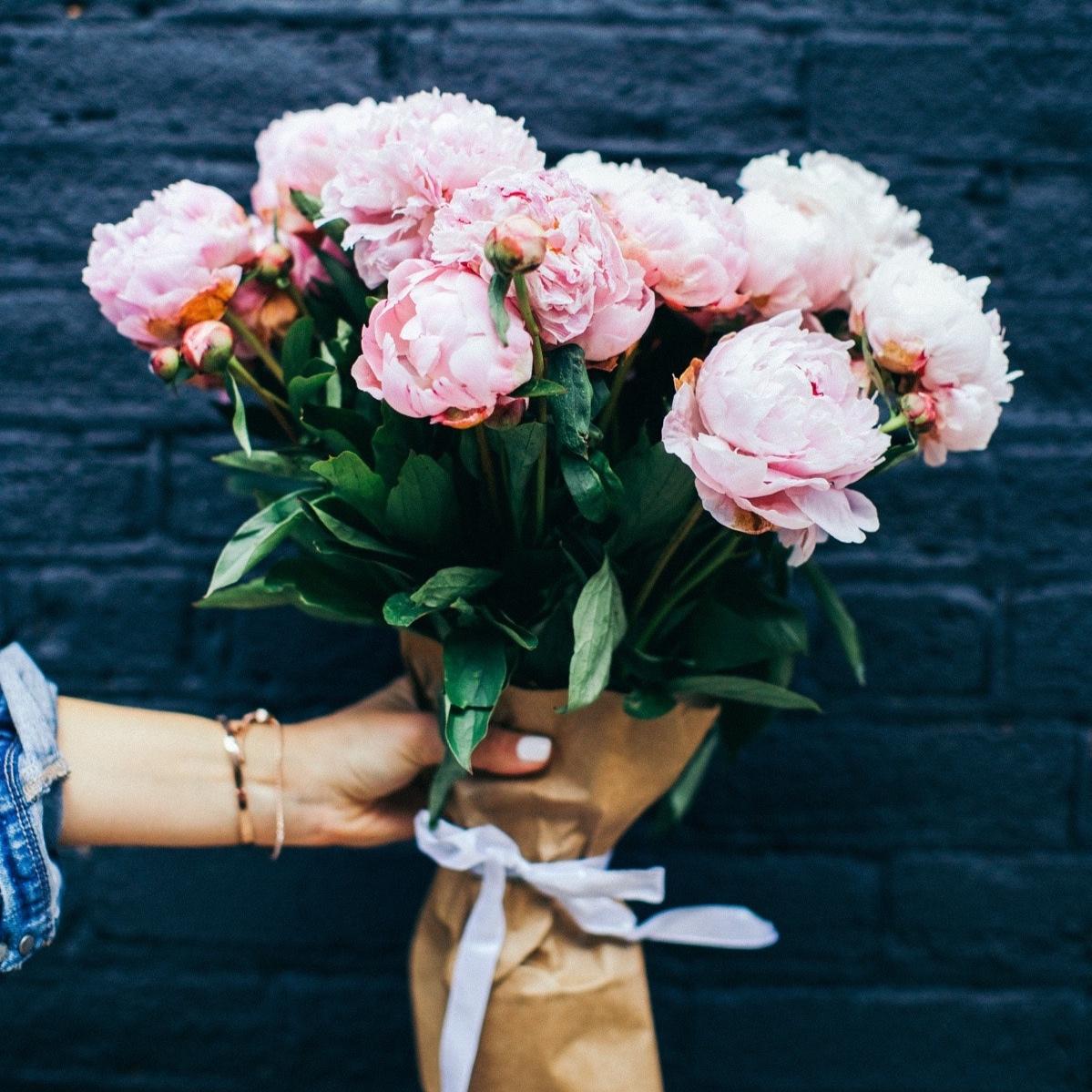 beautiful-beautiful-flowers-bloom-424670.jpg