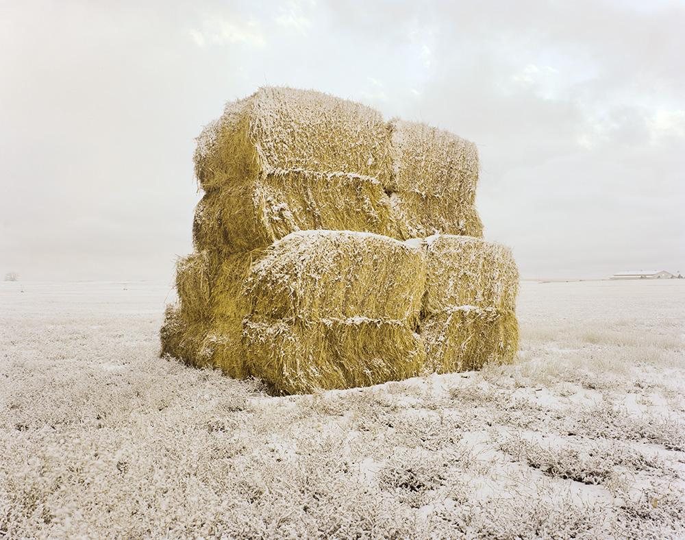 Frosted Bales