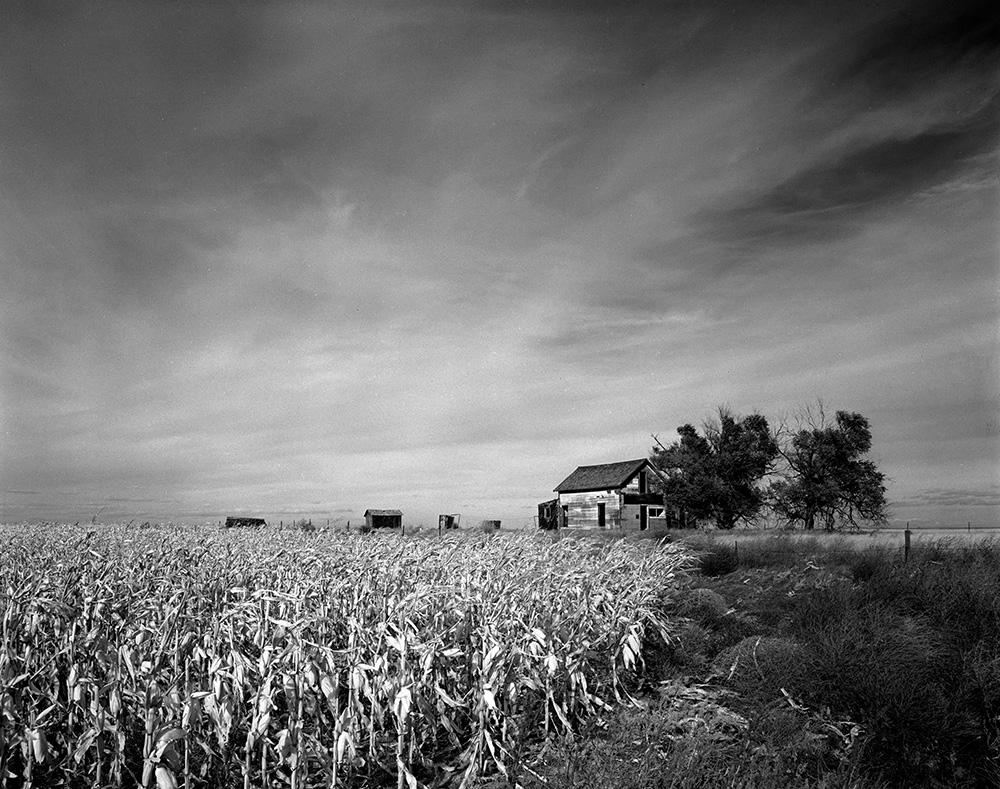 Farmhouse, Corn, Sky