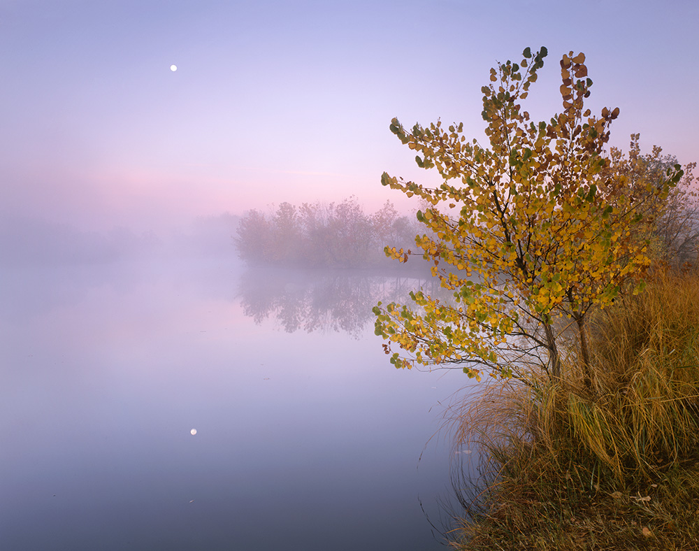 Poudre Moonset