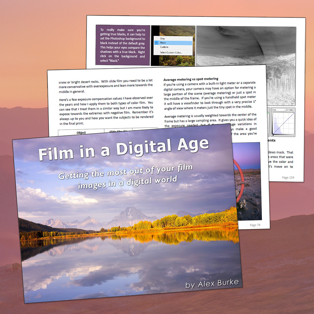 Sample pages from Film in a Digital Age