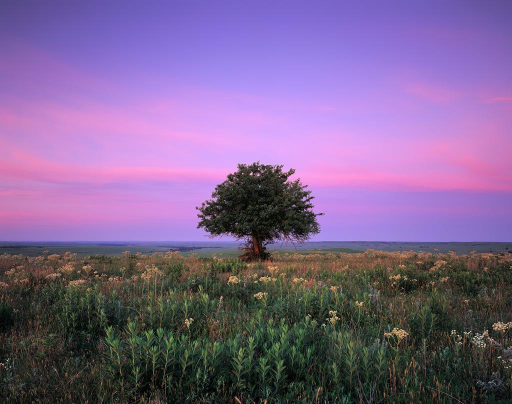 Solitude at Sunrise