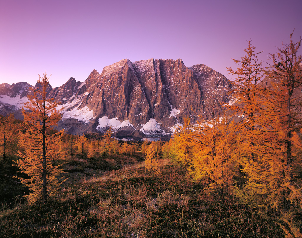 """""""Twilight Over Floe Lake"""" - A truly impressive rock wall rises over the lake near the backcountry campsite, but a 45 minute walk up to the top of a pass gives you even more incredible views of the mountain range. Golden autumn larch made the scene just that much more special. Prints Available."""