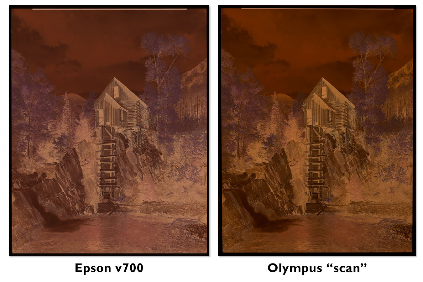 Comparison of negative film scans made using the Epson v700 and a mirrorless camera