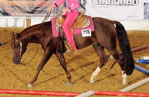 horse_show_trail.png