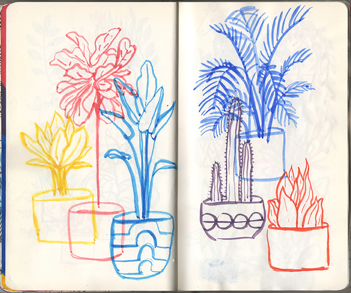 plants2_sketchbook.jpg
