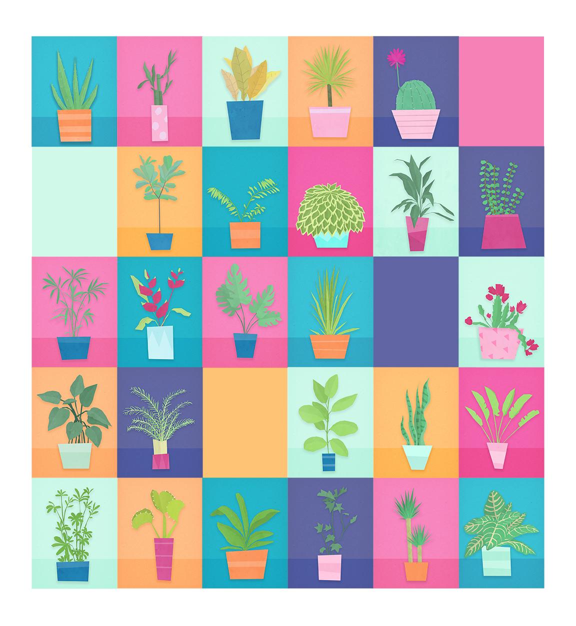 plants_lr.jpg