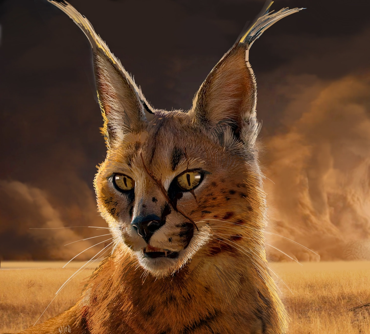 servalconceptart_v03.jpg