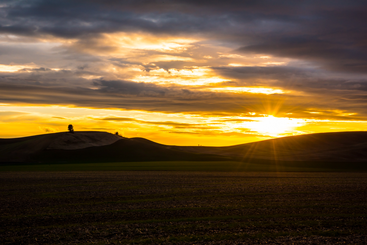 Palouse Sunset #1