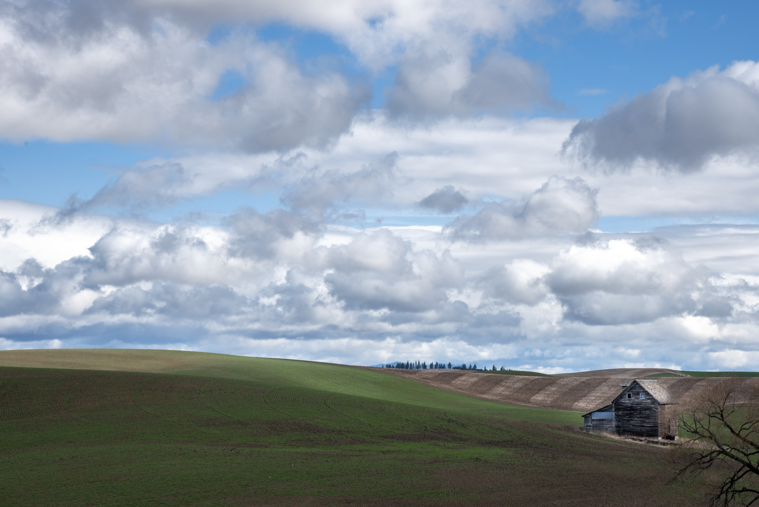 Old Palouse Farmhouse
