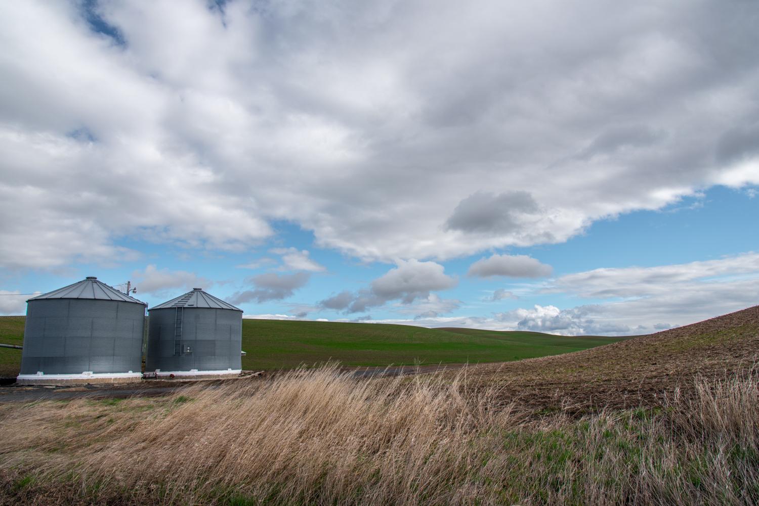 Grain Bins and Big Skies