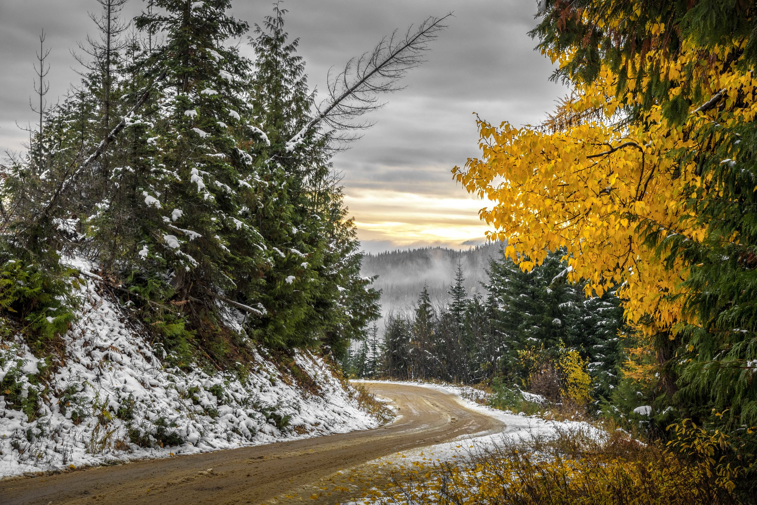 First Snow on the Back Roads