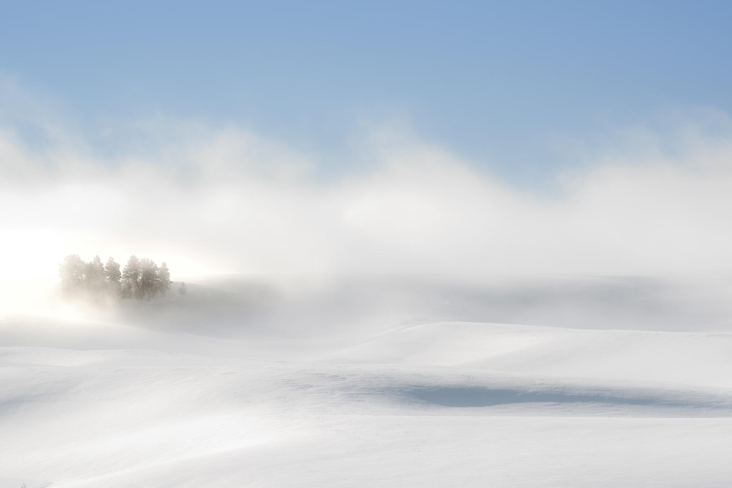 Palouse Winter Mist