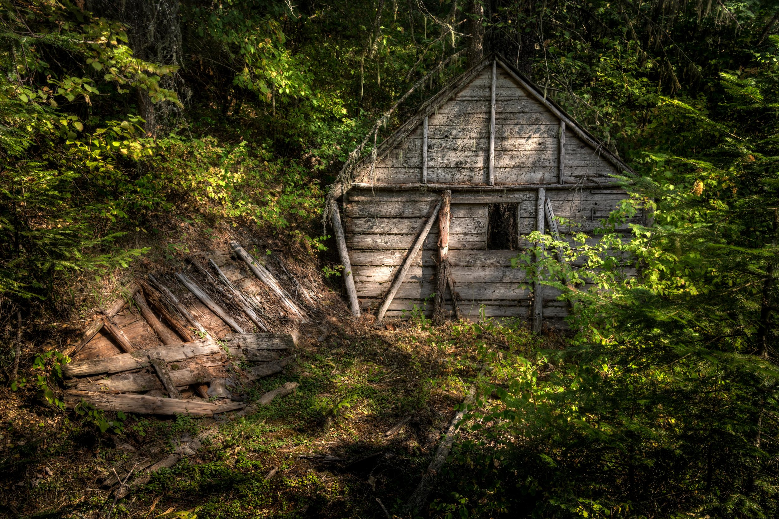 Remnants of a Cabin