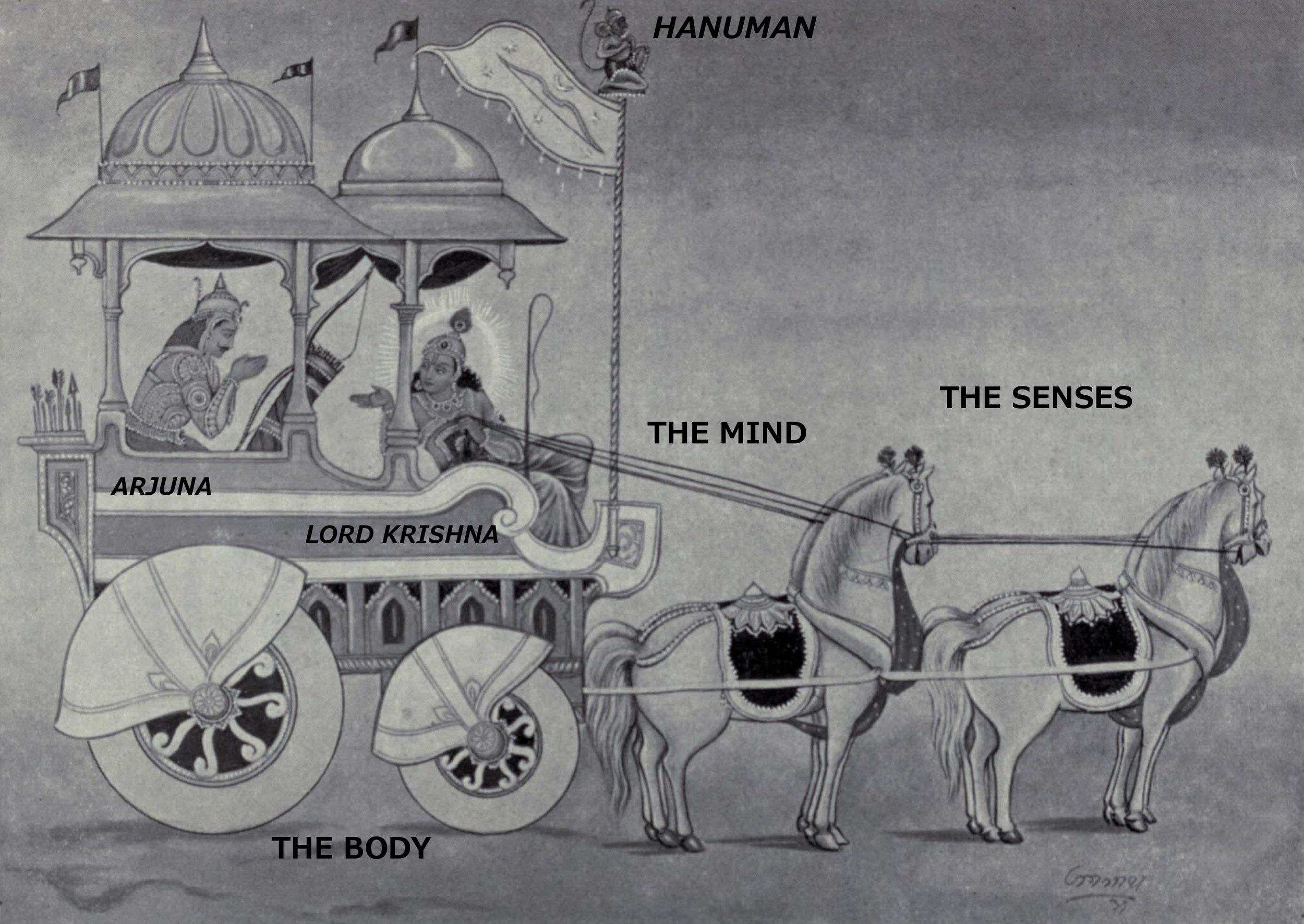 image: Wikimedia commons (  link  ); labels added, based partly on the  Katha Upanishad , Part I chapter 3.