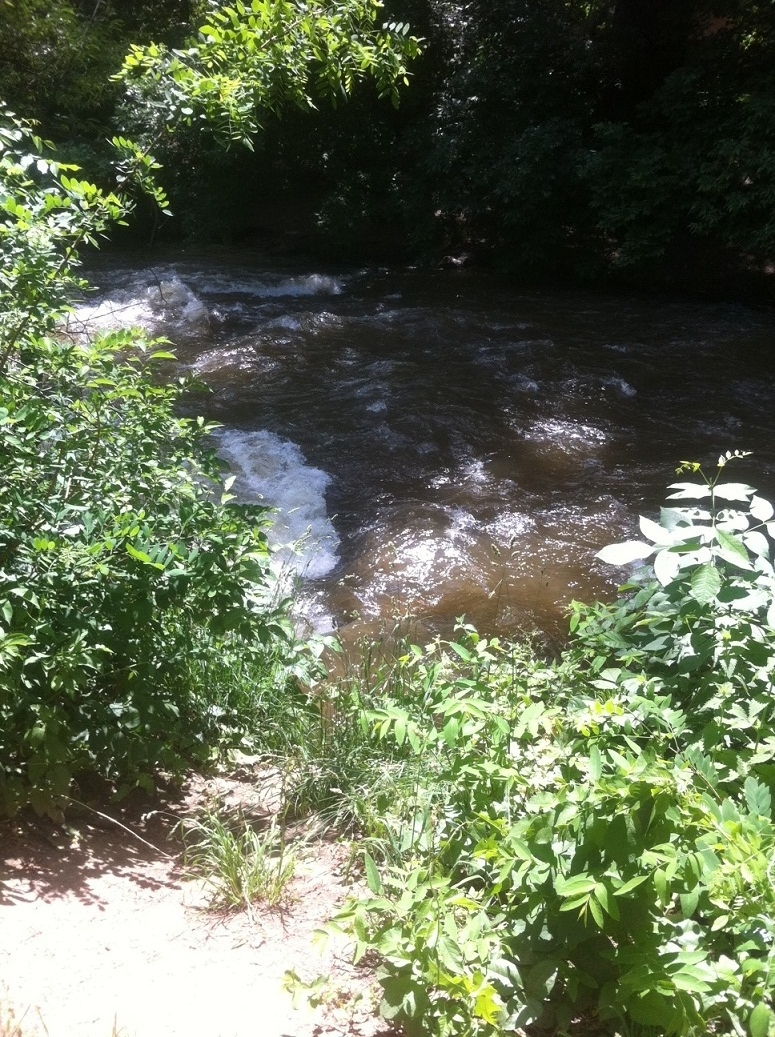 Monday, June 27th by the Boulder Creek Path