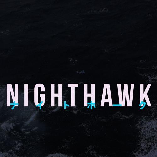 Newdarkage - Nighthawk (LP)