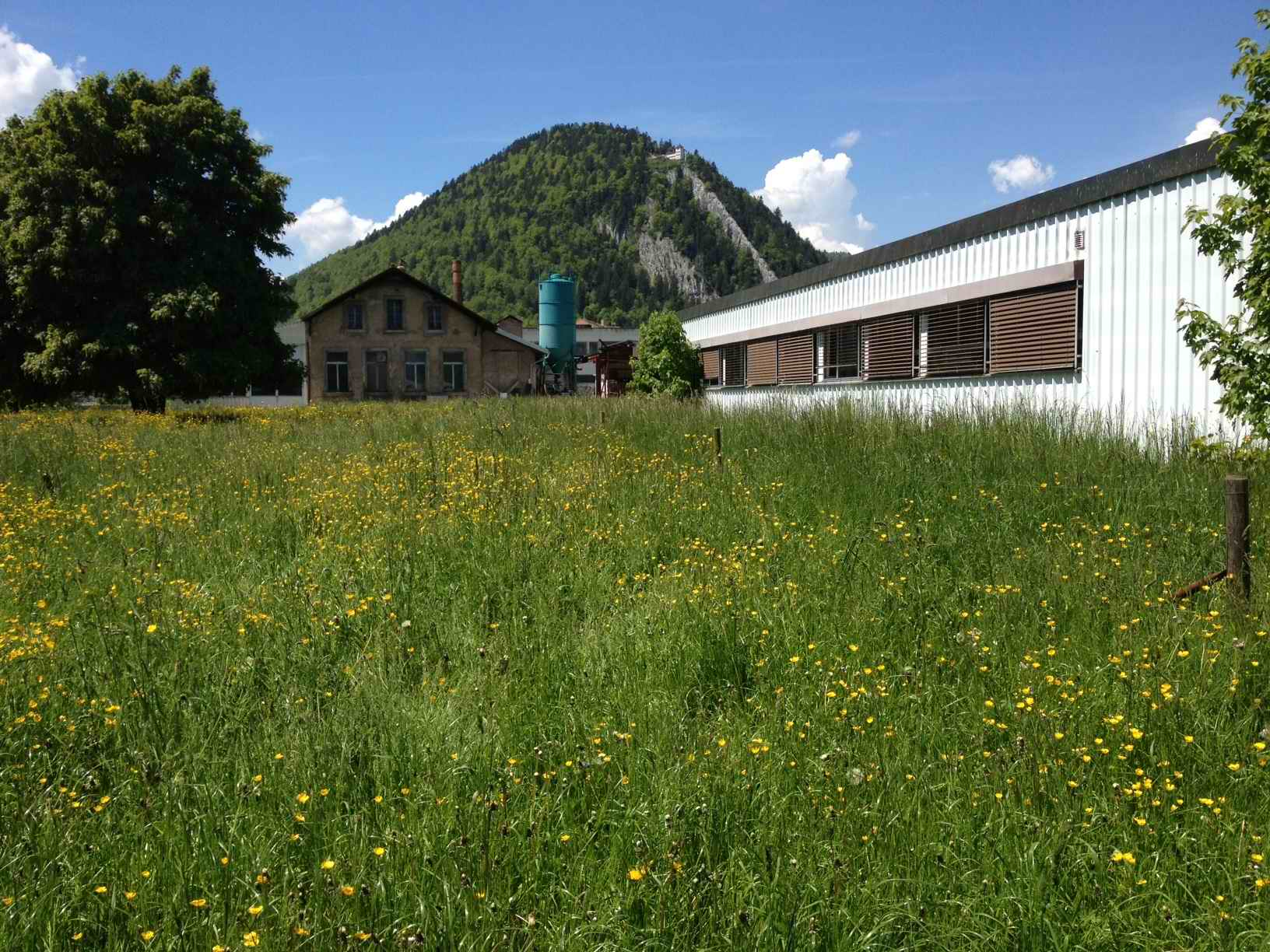 Summertime at PHYTO5®'s factory grounds, Fleurier, Switzerland