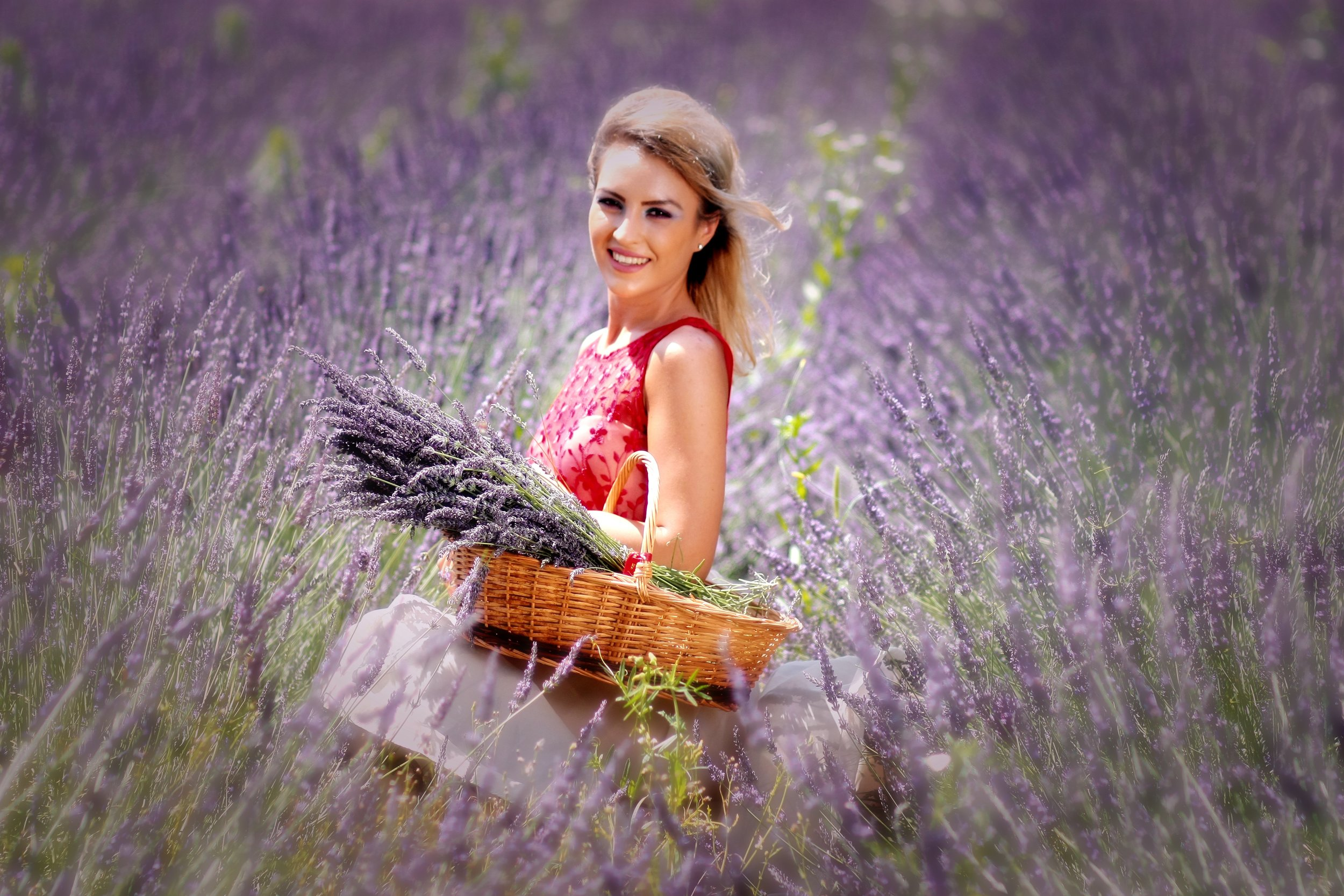 lavender-for-red-irritated-skin.jpg