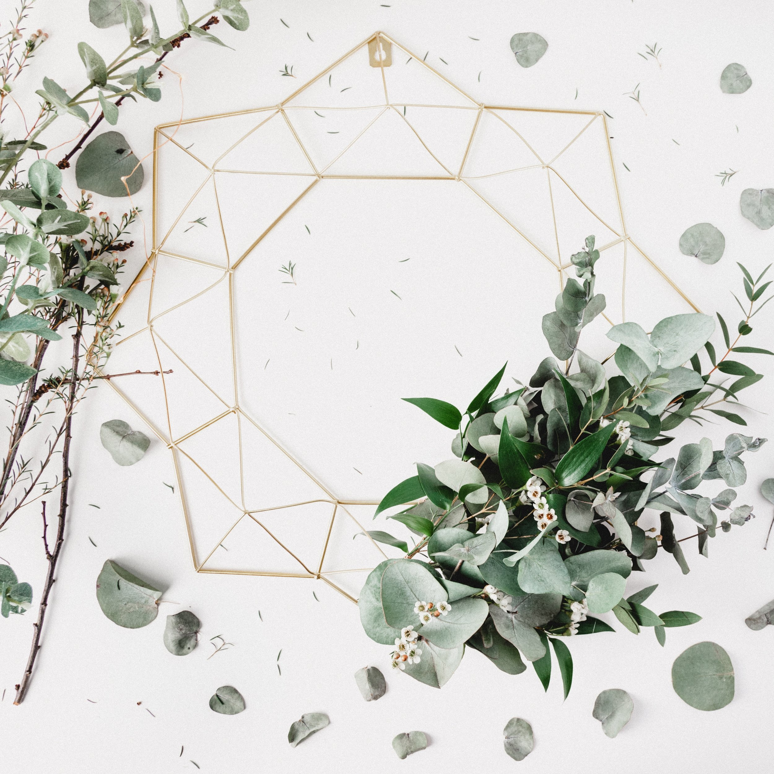 Eucalyptus branches and a sacred geometry form