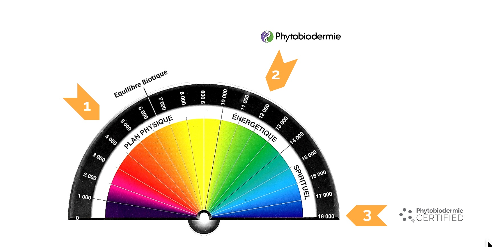 A picture of the Bovis scale applied to PHYTO5 (Phytobiodermie) quantum energetic skincare registering at the highest level for this scales