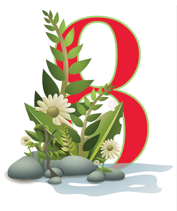 Day 8 of the Days of PHYTO5 Christmas