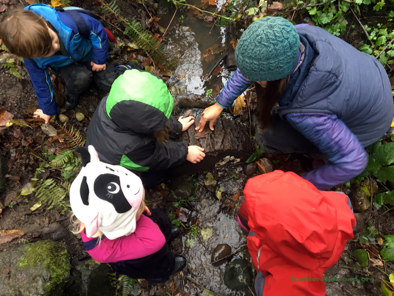 Building a dam across running water - a timeless child's passion and instant physics lesson.