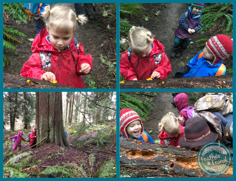 Have you ever touched slimy witch's butter with your nose??? We have! We love the sensory nature of exploring a spring forest, bursting with life!