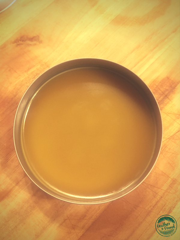 Plantain salve,the perfect addition to your frist-aid kit!