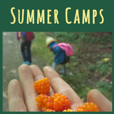 Summer Camps   Day Camps   4-11 Yr. Olds