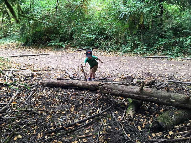 """Chopping"" wood"
