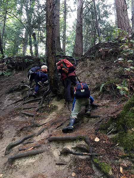 Scrambling up a steep hillside