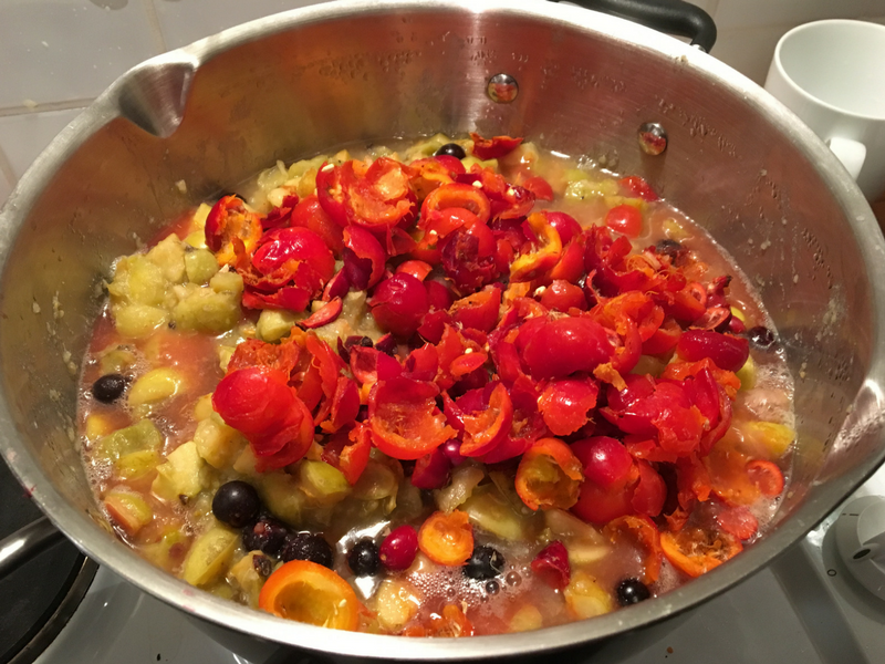 Cooking up the Fruit to make Jelly