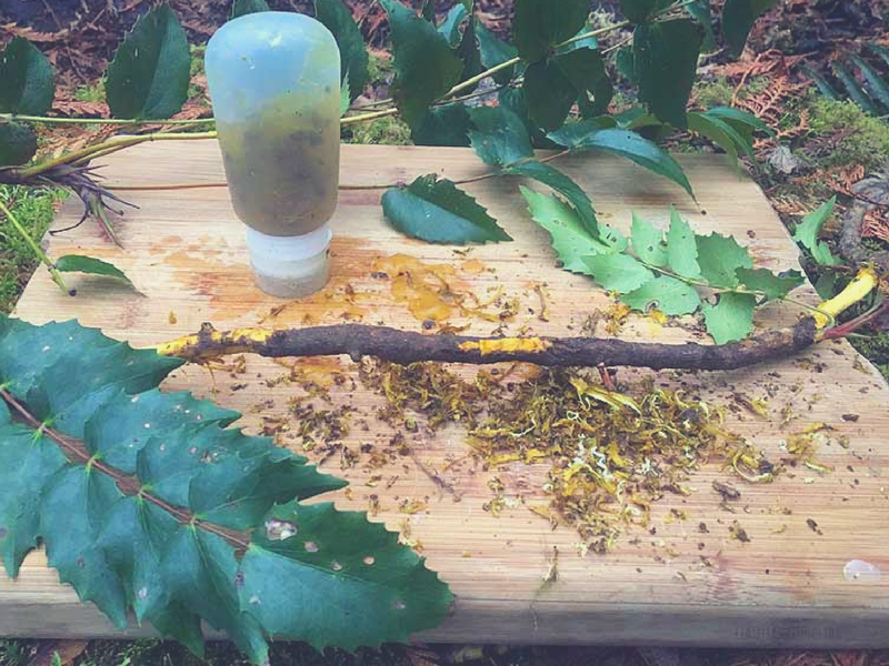 Re-useable silicon tubes are a great way to store your Oregon grape Root Hand Sanitizer