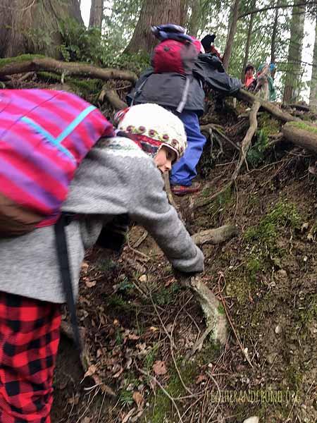 Scrambling up a steep hillside!