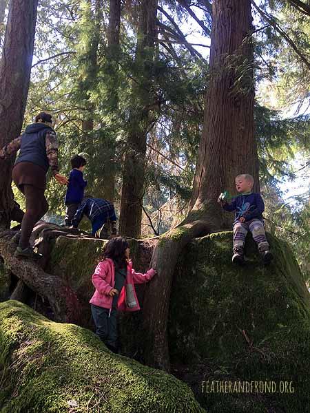 Adventures at Squirrel Rock