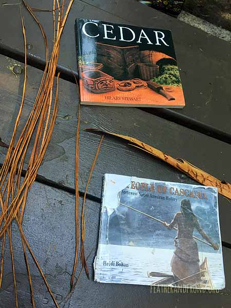 These are great resources about traditional uses of Cedar