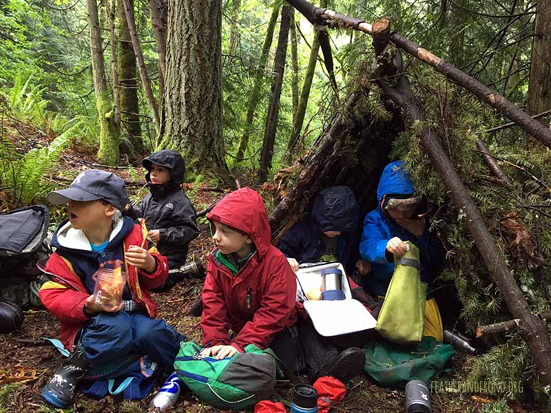 We love this debris shelter!
