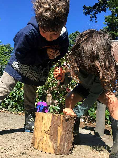 Making habitat for the bees
